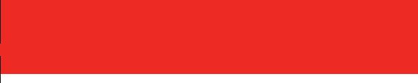 creditsafe logo