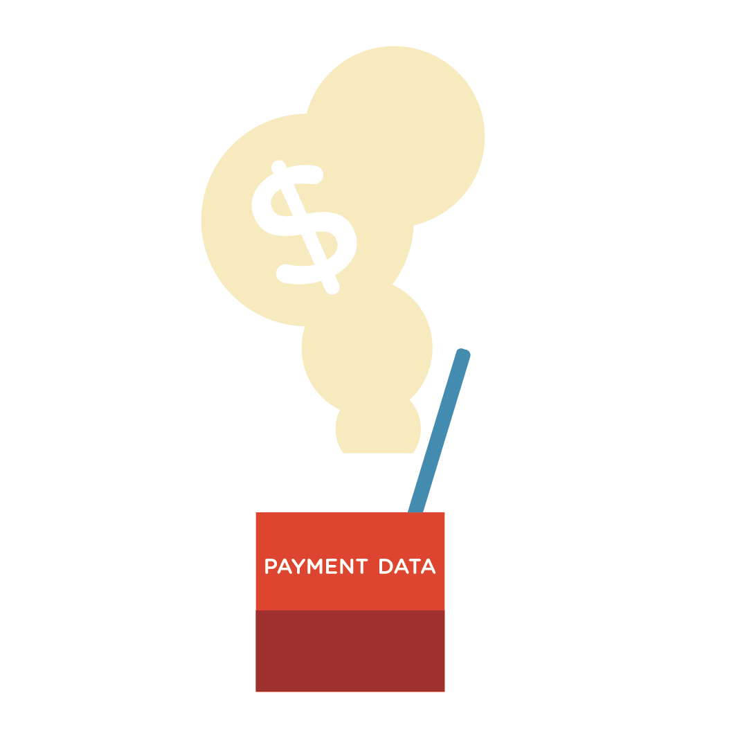 payment data potion